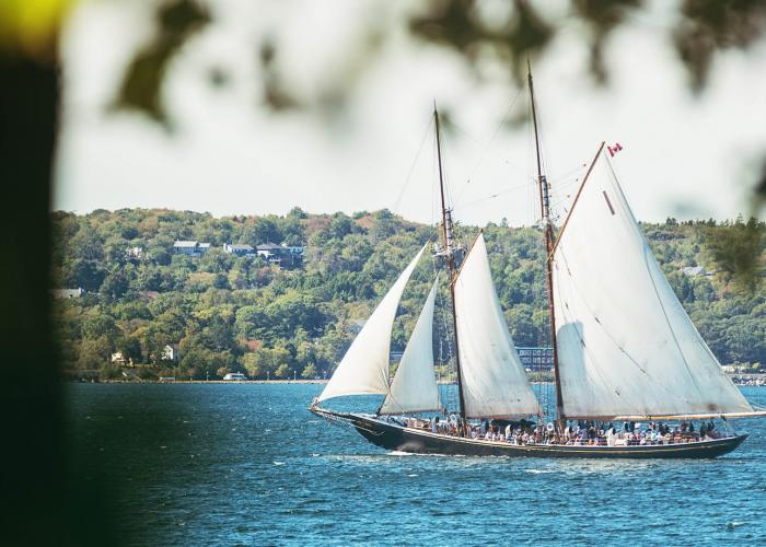 The tourist filled Bluenose II, a replica of the famous racing schooner, sails past the tree-lined hills of Lunenburg Harbour.