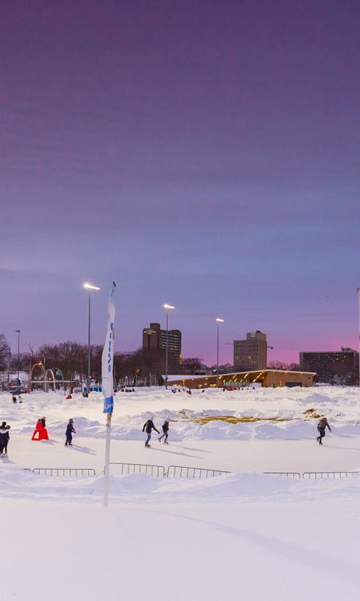Skating at the Oval