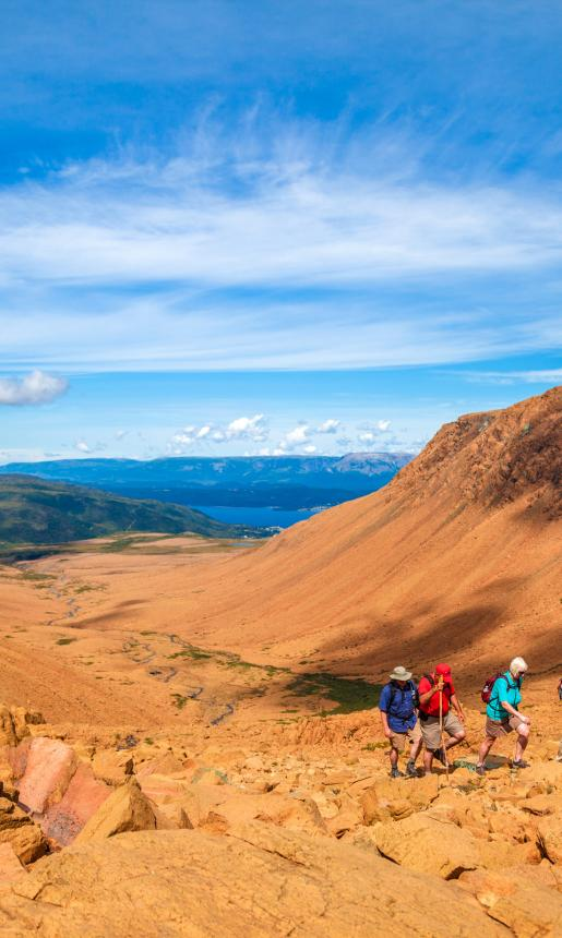 Tablelands-Gros-Morne-National-Park-Western
